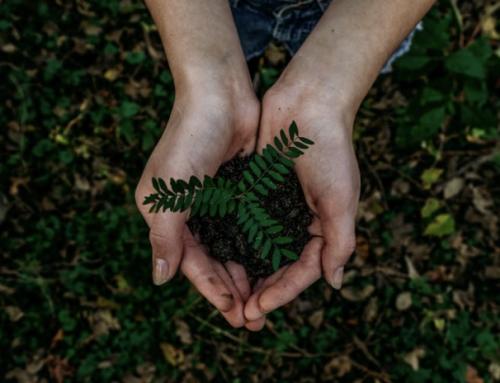 El futuro de los residuos en las economía circular será objeto de reflexión en una jornada deAcciona y Retema
