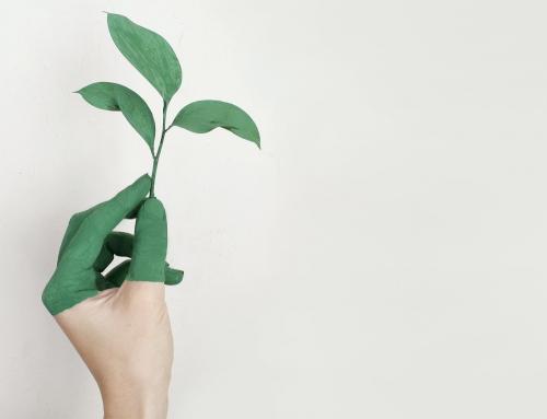 ¿Qué son los productos sostenibles?